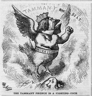 Tammany Ring Phoenix Fighting Cock, Boss Tweed Politics
