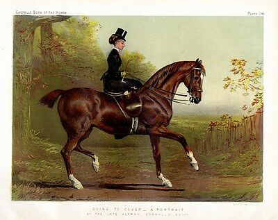 Ladies In The Hunting Field On Horseback, Horse Fashion