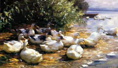 Ducks At The Pond Painting By Alexander Koester On Canvas Repro Large