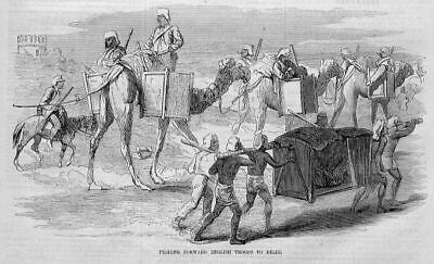 Camels Hauling English Troops To Delhi, Antique History