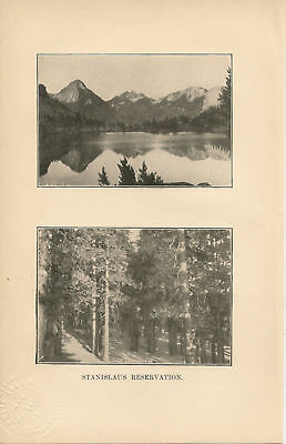 1901  Forest Reserves Stanislaus San Jacinto article