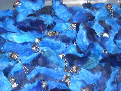 **BLUE Rabbit's foot key chains!   Buy all you want!!!