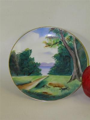 Antique Hand Painted Wall  Plate Hadson Ware Japan