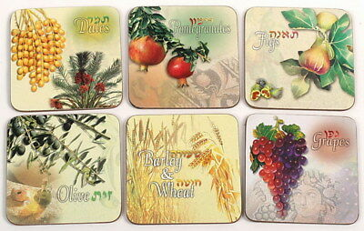 Holy Promised Land Bible 7 Seven Kinds Species of Israel Coasters, Judaica Gift