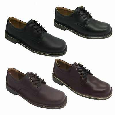 Ladies School Shoes Wilde Jezra Lace Up Leather Tbar Style Black/Brown new 5-12