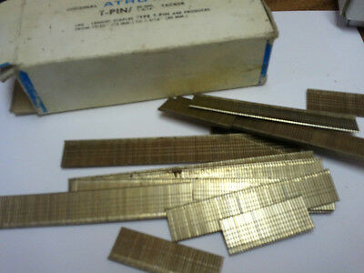 Atro T- Pins, 30mm for Tacker