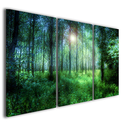 Quadri Moderni Greenwood Stampe Su Tela Pictures Modern Print On Canvas 130 X 90