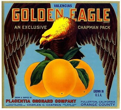 """GOLDEN EAGLE"" RARE ORIGINAL 1930s FULLERTON CALIFORNIA ORANGE FRUIT CRATE LABEL"