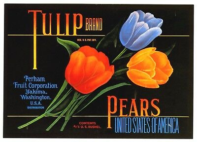 Tulip~Colorful Flowers~Historical Pear Fruit Crate Label Art~New 1983 Postcard