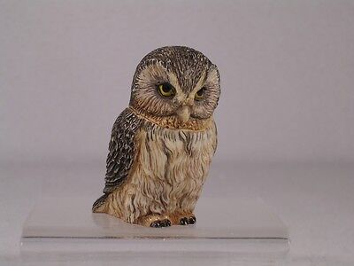 Harmony Kingdom Ball Pot Bellys / Belly 'Boreal' Owl #PBZOW9 New In Box