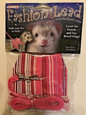 Ferret Toy Dog Fashion Jacket Style Harness Lead Pink Stripes with Lace