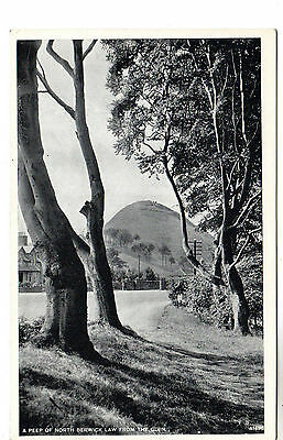North Berwick Law - Photo Postcard c1920