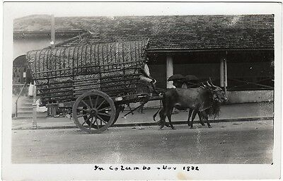 Unique Real Photo Postcard Heavy Thatched Wagon Colombo Ceylon