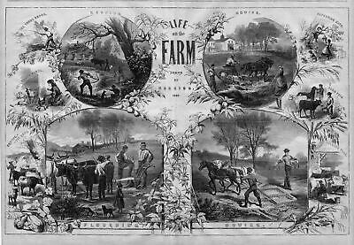 Life On The Farm 1867 Trout Fishing Mowing Sowing Ploughing Reaping Milking Cows