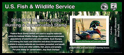 US.# RW79A  Federal Duck Stamp MINT POST OFFICE FRESH!