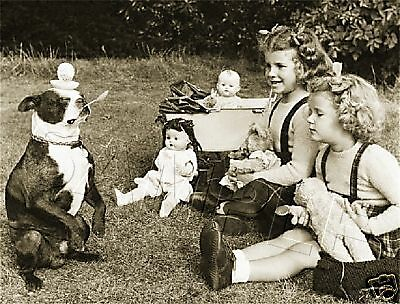 Boston Terrier Children Dolls Vintage Canvas Photo Art