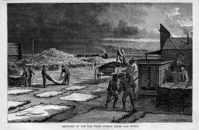Curing Hides And Bones In The Far West, Railroad Train Tracks, Pioneers History