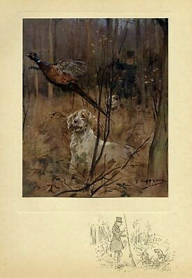 Pheasant Hunting Sportsman Shooting Old Style, Dog Spaniel, Antique Color Print