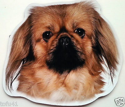 ***Pekingese Magnet***Anywhere / Car Magnet