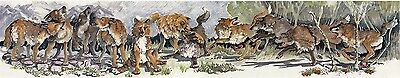 "Enid Groves ""Native Family"" Wolf Wolves Print"