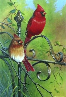 "Garden Visitors By Cynthie Fisher Cardinal Print 7.75"" x 11.75"""