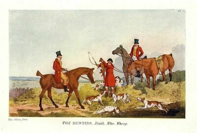 Huntsman Sportmen Kill The Fox, Death Of The Fox, Hunting With Foxhounds, Horse