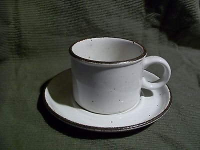 Stonehenge Midwinter Creation Cup & Saucer Set s Wedgwood Group