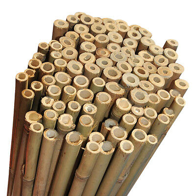 4ft Extra Strong Heavy Duty Professional Bamboo Plant Support Garden Canes