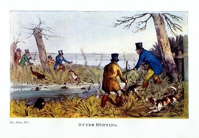 Otter Hunting With Dogs Hounds, Sportsmen Hunters Hunt Otter, 1903 Vintage Print