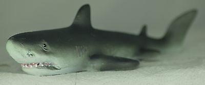 Small Floating Shark for Small Garden Pond or Aquarium,a Useful Present or Gift