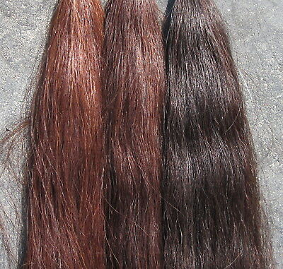 "Horse Tail Extension 1.25# 36"" CHESTNUT New KATHYS TAIL FREE US Shipping & Bag"