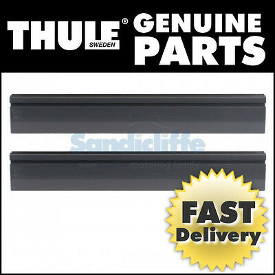 Thule Ski carrier for Pacific 500