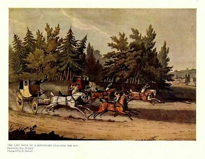 Horse, Coaching Race, Horses Coach, Four In Hand, Antique Color Sporting Print
