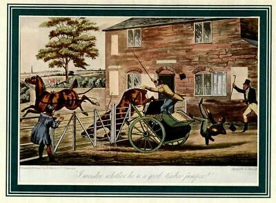 Horses, Two In Hand Run Into Fence, Carriage Accident, Color  Sporting Print