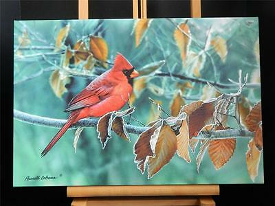 Cardinal Red Bird Gallery Wrapped Canvas Giclee Print Art Made in USA 13 X 19""