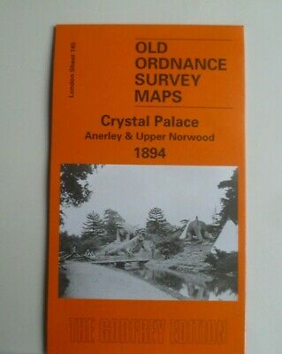 Old Ordnance Survey Maps Crystal Palace Upper Norwood & Anerley London 1894 S145