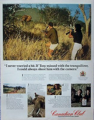 1970 Canadian Club Bull Elephant Tony Thelma Parkinson Tsavo National Park ad