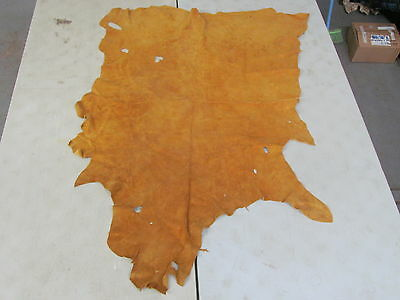 """58"""" X 43"""" Commercially Tanned Moose Hide, Perfect For Beading, Light Color"""