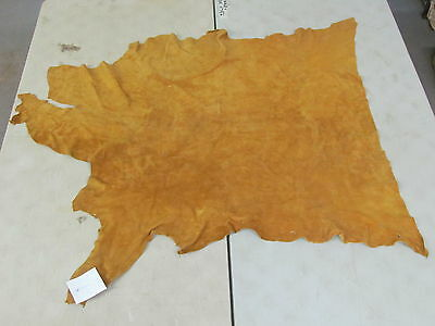 """39"""" X 50"""" Native American Soft Moose Hide, Commercial Tanned, Light Color"""