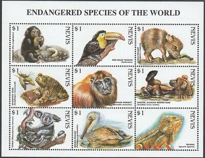 (20628) Minisheet: Nevis: Chimp Koala Bear Pelican Toad