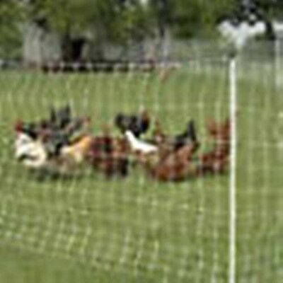 Fencing Livestock Supplies Agriculture Amp Forestry