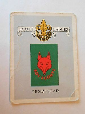 Vintage South Africa Boy Scout Tenderpad United Tobacco Co Advertising Card