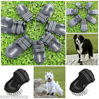 Walker Active Dog Boots - Now A Choice Of 7 New Sizes