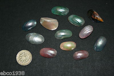 12 X shaped mother of pearl shell pieces