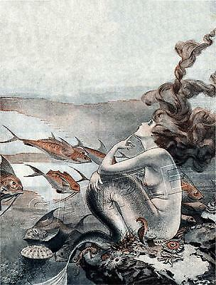 VINTAGE FRENCH FANTASY ART DECO MERMAID HAIR No Legs *CANVAS* PRINT - FREE SHIP