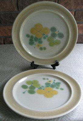 Two Franciscan Earthenware Pebble Beach Dinner Plates