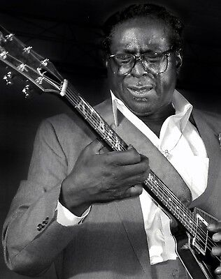 Albert King 8X10 Glossy Photo Picture