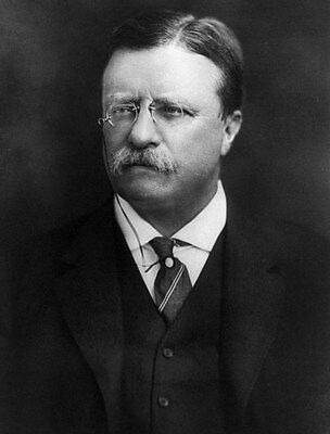 Us President Theodore Teddy Roosevelt 8X10 Glossy Photo Picture