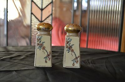 Royal Austria Ceramic Salt And Pepper Shakers Floral Design In Good Condition