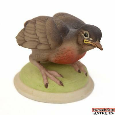 1975 Boehm USA Hand Painted #437 Baby Robin Figurine Porcelain Fledgling 10704